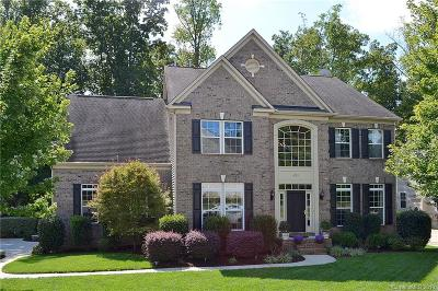 Statesville, Charlotte, Mooresville Single Family Home For Sale: 4103 Amber Leigh Way Drive