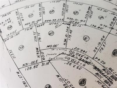 Gaston County Residential Lots & Land For Sale: LOT 40 SPANISH OAK LN Spanish Oak Lane #40