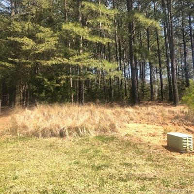 Gaston County Residential Lots & Land For Sale: 4000 Beechwood Spring Lane #65