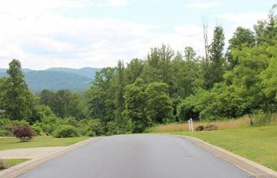 Buncombe County Residential Lots & Land For Sale: 9999 Carden Lane #Lot 11