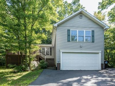 Asheville Single Family Home For Sale: 10 Silver Springs Drive