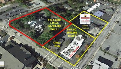 Henderson County Commercial For Sale: 715 N Church Street