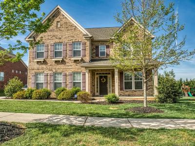 Single Family Home For Sale: 16202 Grassy Creek Drive