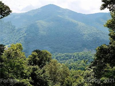 Haywood County Residential Lots & Land For Sale: Lot 5 Big Boulder Ridge