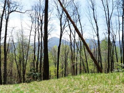Haywood County Residential Lots & Land For Sale: Lot 10 Big Boulder Ridge