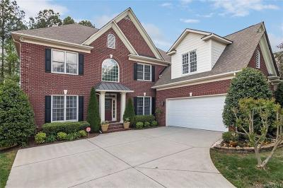 Charlotte Single Family Home For Sale: 11656 James Richard Drive