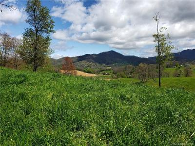 Buncombe County, Haywood County, Henderson County, Madison County Residential Lots & Land For Sale: Frank Davis Road