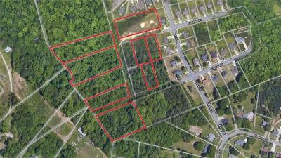 Mecklenburg County Residential Lots & Land For Sale: 5013 Coppala Drive