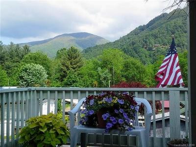 Maggie Valley NC Single Family Home For Sale: $48,000