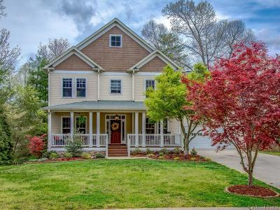 Asheville Single Family Home For Sale: 16 Dianthus Drive