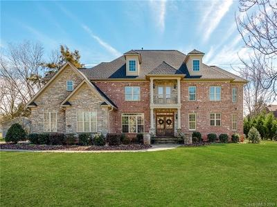 Mint Hill Single Family Home For Sale: 13136 Odell Heights Drive
