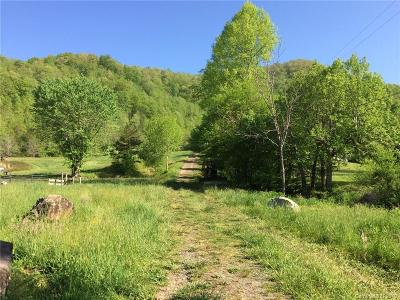 Buncombe County, Haywood County, Henderson County, Madison County Residential Lots & Land For Sale: 99 Burleson Branch Road