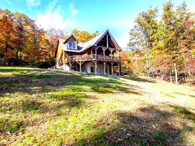 Henderson County Single Family Home For Sale: 40 Butler Ridge Trail