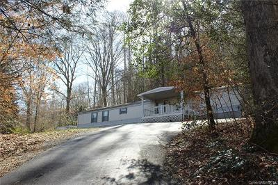 Transylvania County Single Family Home For Sale: 124 Wilson Road