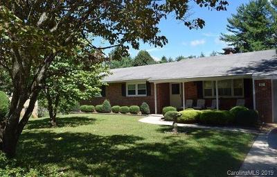 Transylvania County Single Family Home For Sale: 141 Delphia Drive