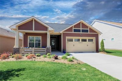 Denver Single Family Home For Sale: 4786 Looking Glass Trail