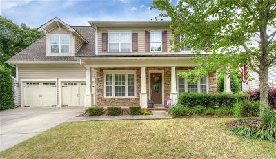 Fort Mill Single Family Home For Sale: 538 Quicksilver Trail