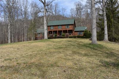 Buncombe County Single Family Home For Sale: 355 Poplar Drive