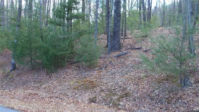 Henderson County Residential Lots & Land For Sale: 281 Judson Ridge Road #24