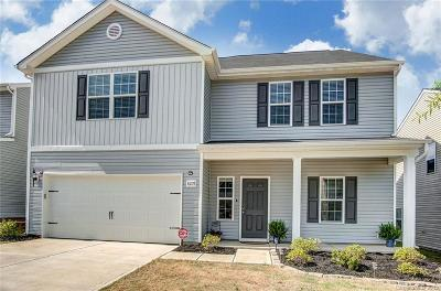 Charlotte Single Family Home For Sale: 8207 Paw Valley Lane