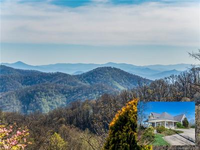 Weaverville NC Single Family Home For Sale: $1,185,000