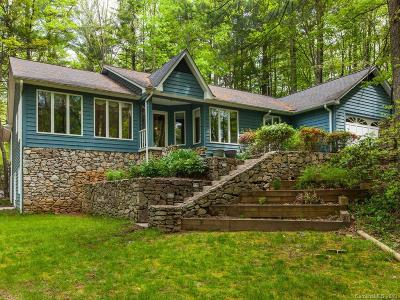Mills River Single Family Home For Sale: 10 White Birch Drive