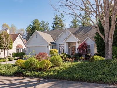 Hendersonville Single Family Home Under Contract-Show: 34 Williams Meadow Loop