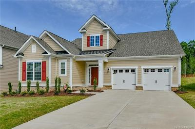 Tega Cay Single Family Home For Sale: 6135 Cloverdale Drive