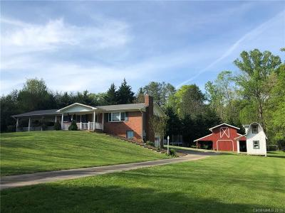 Transylvania County Single Family Home For Sale: 1529 Island Ford Road
