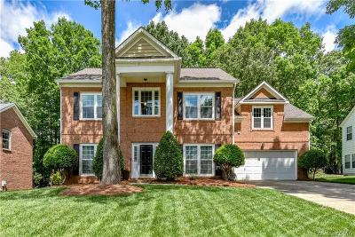 Mint Hill Single Family Home For Sale: 10509 Sycamore Club Drive