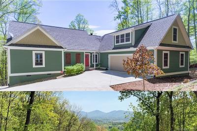 Mills River Single Family Home For Sale: 14 Mulberry Lane