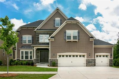 Fort Mill, Rock Hill Single Family Home For Sale: 485 Brier Knob Drive