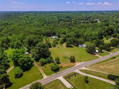 Davidson Single Family Home For Sale: 10179 Earnhardt Lake Road