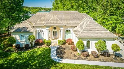 Mooresville Single Family Home For Sale: 139 Larkhaven Lane