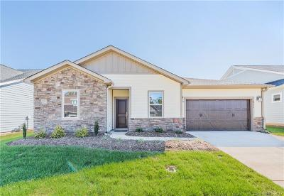 Denver Single Family Home For Sale: 4771 Looking Glass Trail
