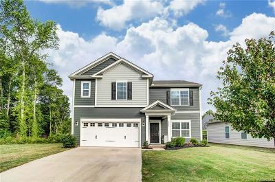 Fort Mill Single Family Home For Sale: 1226 Brookcrest Lane