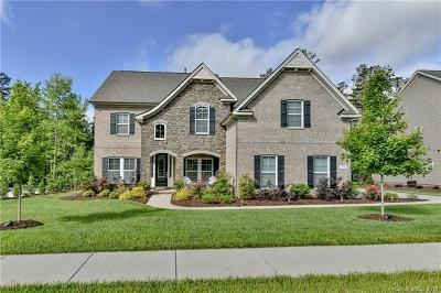 Waxhaw Single Family Home For Sale: 1728 Cavaillon Drive