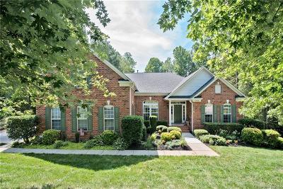 Denver Single Family Home For Sale: 1399 Verdict Ridge Drive