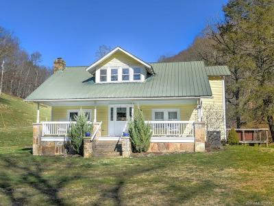 Mars Hill Single Family Home For Sale: 4674 Paint Fork Road