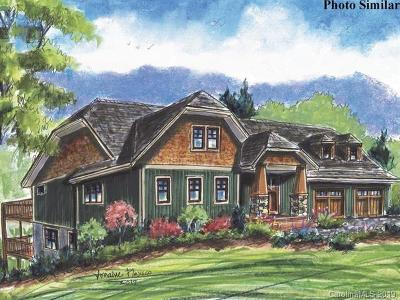 Asheville NC Single Family Home For Sale: $1,250,000