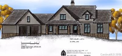 Arden Single Family Home For Sale: 77 Misty Valley Parkway #Lot 4