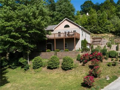 Hendersonville Single Family Home For Sale: 7 Shady Branch Trail