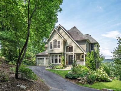 Mills River Single Family Home For Sale: 803 High Vista Drive