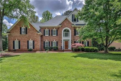 Ballantyne Country Club Single Family Home For Sale: 10627 Lederer Avenue