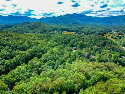 Bat Cave, Black Mountain, Chimney Rock, Columbus, Gerton, Lake Lure, Mill Spring, Rutherfordton, Saluda, Tryon, Union Mills Residential Lots & Land For Sale: Raleigh Drive #3