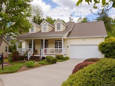 Hendersonville Single Family Home For Sale: 30 Waterbury Court