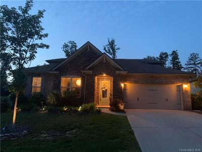 Fort Mill Single Family Home For Sale: 2015 Bosna Lane