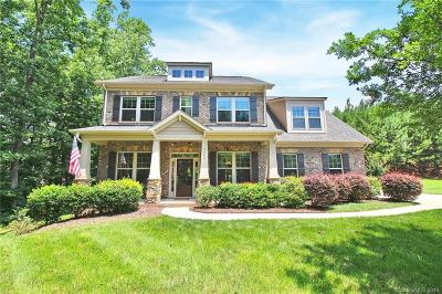 Indian Land Single Family Home Under Contract-Show: 9056 Mossy Hill Lane