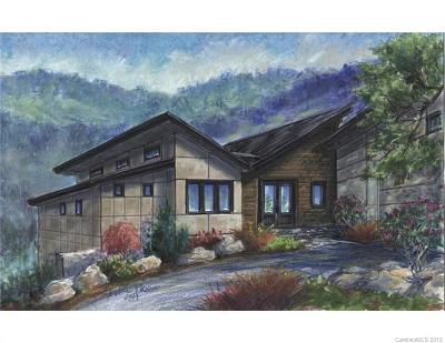 Asheville NC Single Family Home For Sale: $1,400,000