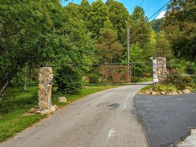 Leicester Residential Lots & Land For Sale: 321 Bear Wallow Road #17